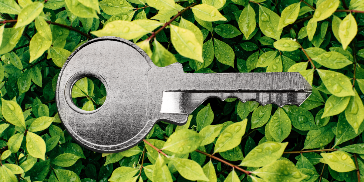 Turning your rental green: Why environmental efficiencies are key for today's tenants